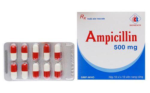 Ampicillin 500mg