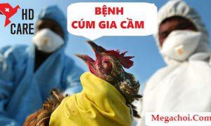 Bệnh cúm gia cầm