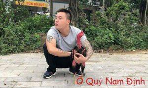 Ô Quỷ Nam Định