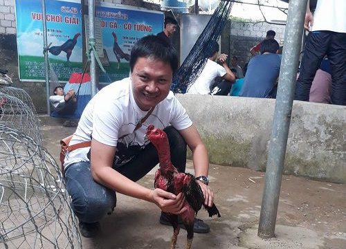 Kinh nghiệm nuôi gà